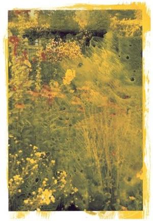 autumn border i by ellen phelan