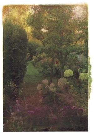 autumn garden by ellen phelan