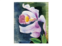 orchidee (orchid) by moïse kisling