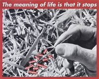 untitled (the meaning of life is that it stops) by barbara kruger