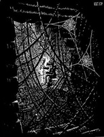 cobwebs by m. c. escher