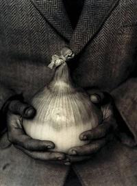 mammoth improved onion by tessa traeger