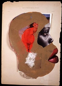 adult female sexual organs by wangechi mutu