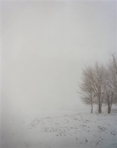 #7412 by todd hido