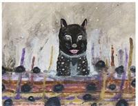 swamp cat by scott daniel ellison