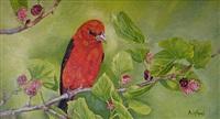 scarlet tanager by elizabeth ashford