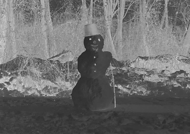 schneemann (snowman) by martin honert