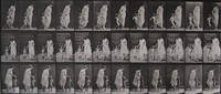animal locomotion, plate 72 running and leading child hand in hand by eadweard muybridge