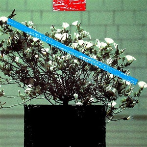 untitled (flower) by john baldessari