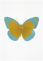 the souls ii - paradise copper/topaz/blind impression by damien hirst