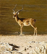 impala by tony karpinski