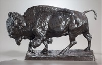 bull bison by charles cary rumsey