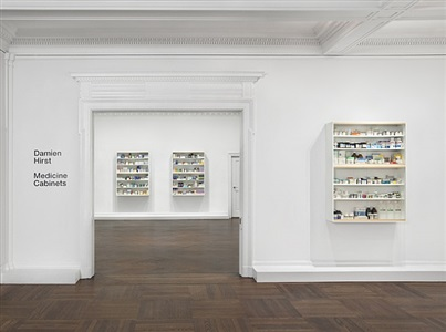 installation view by damien hirst