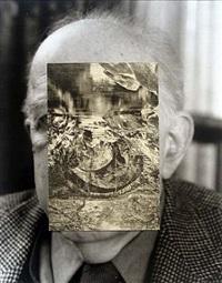 old mask vii by john stezaker