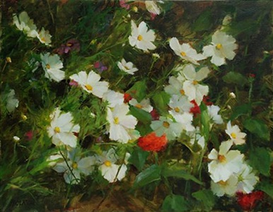 white cosmos and zinnias (sold) by kathy anderson