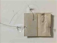 llibre de dibuixos / book of drawings by jordi alcaraz