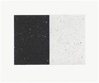 black and white diptych by vija celmins