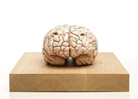 the brain of a killer by jan fabre