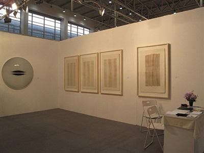 art beijing 2011 (works of chen yufan)