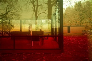 0696 (glass house series) by james welling