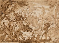 the triumph of bacchus by domenico piola