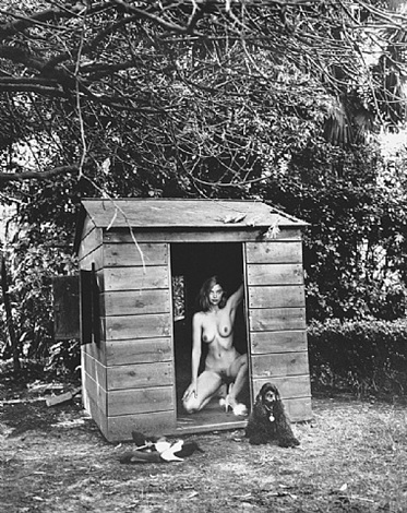 domestic nude 7 by helmut newton