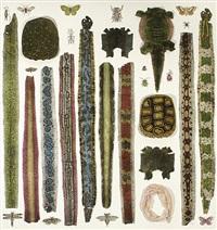 natural curiosities #10 by jane hammond