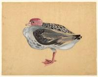 bird, no. 845 by morris graves