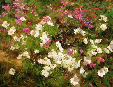 summer cutting garden by kathy anderson