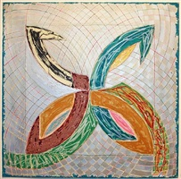 polar co-ordinates v by frank stella