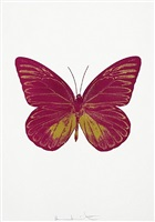 the souls i – fuchsia pink/oriental gold by damien hirst