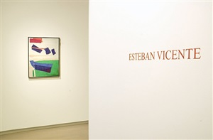 installation view by esteban vicente
