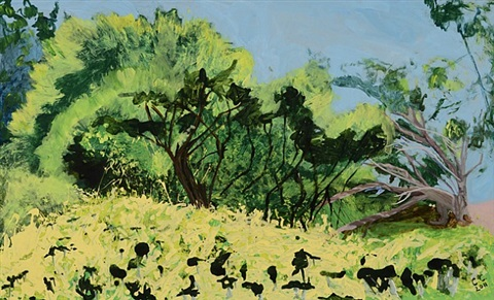 cayetana conrad, oil paintings a tangled wood by cayetana conrad