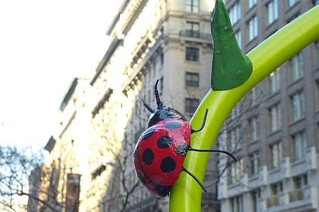 ladybug by will ryman