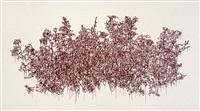 crimson rose by andrew millner