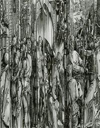 dürer variation ii by frederick sommer