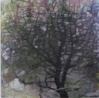 thin rain by su-li hung
