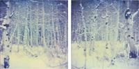snow silence i + ii by stefanie schneider