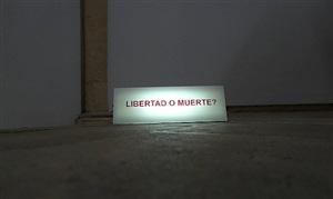 libertad o muerte? by marcelo viquez