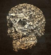 floral skull b&w by jacky tsai