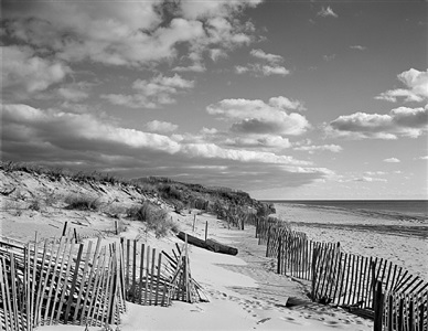 beach fence #8 by daniel jones