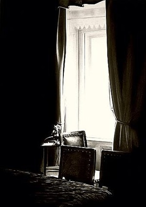 the freud cycle (drapes with telephone) by robert longo