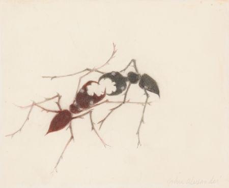 fighting ants by john alexander