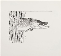 pond life (pike) by bill woodrow