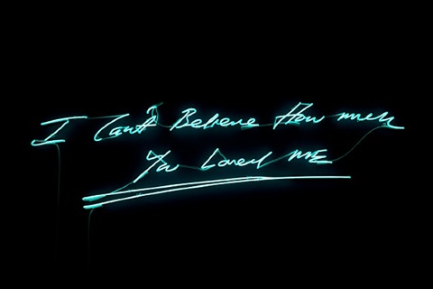i can't believe how much you loved me by tracey emin
