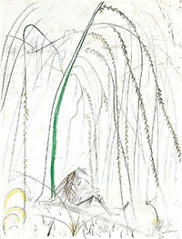 ronsard suite: weeping willow by salvador dalí