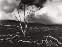 volcanic devestation by brett weston