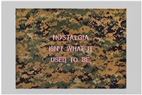 nostalgia isn't what it used to be by elaine reichek
