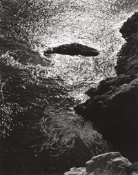 china cove, point lobos by edward weston
