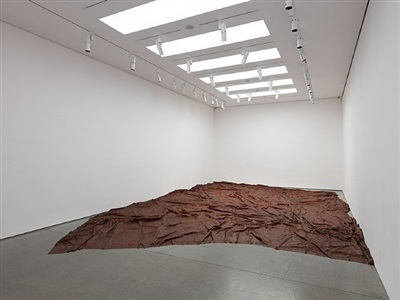 doris salcedo by doris salcedo
